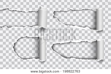 Set of vector holes torn in paper with rolled edges isolated on transparent background