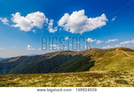 beautiful clouds on a blue sky over mountain ridge with grassy meadows and green forests