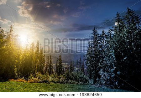 day and night time change concept. Spruce forest on a meadow in High Tatras mountain ridge. Beautiful sunny day in Poland Countryside
