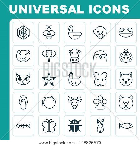 Zoology Icons Set. Collection Of Grizzly, Duck, Bunny And Other Elements