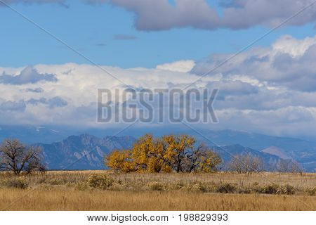 A View Of The Front Range of the Rocky Mountains Near Denver From Rocky Mountain Arsenal National Wildlife Refuge