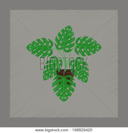 flat shading style Illustrations of plant Monstera