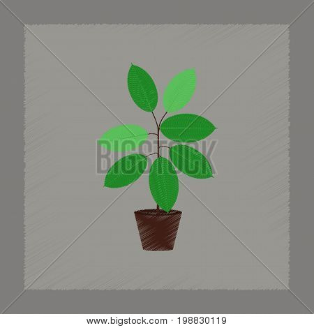 flat shading style Illustrations of plant Ficus