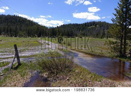 Spring run-off water flows down dirt road in a meadow of Idaho's Sawtooth Mountain range, near Stanley.