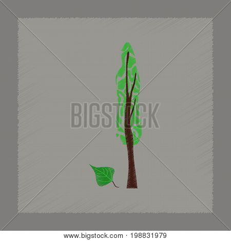 flat shading style Illustrations of plant Populus