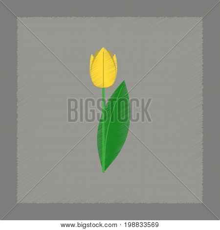 flat shading style Illustrations of plant Tulipa