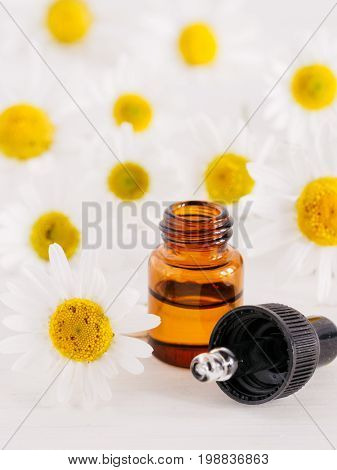 Essential oil in glass bottle with pipette and fresh chamomile flowers, beauty treatment. Spa concept. Fragrant oil of chamomile flowers on white wooden table. Vertical. Copy space.