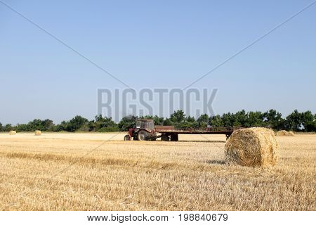 Tractor with hay. The tractor carrying hay. Bales of hay stacked in the cart.