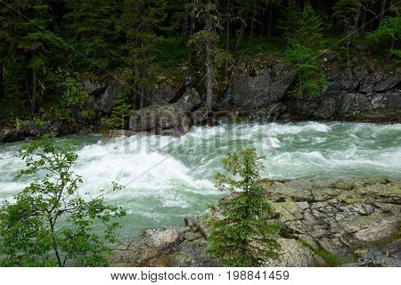 A white-water stream, flowing through Montana's Glacier National Park.