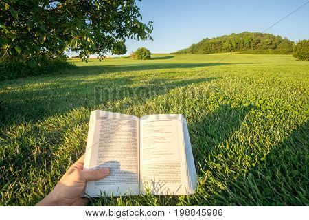 Reading a book in a Park in the nature, point-of-view-shot