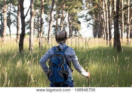 Caucasian Adolescent In Hat With Backpack And Stick Stands In The Pine Forest. Summer Time.