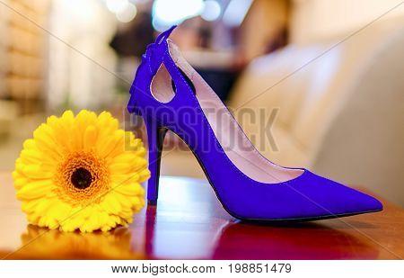 Beautiful fashion purple high heel footwear for women