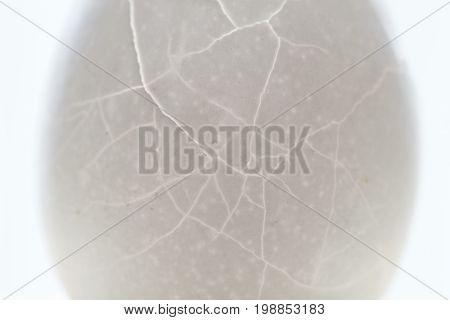 Cracked egg shell closeup texture. Crack eggshell backlight photo. Broken egg abstract macrophoto. Broken shell texture with crack. Health and reproduction loss concept. Medical x-ray view of eggshell