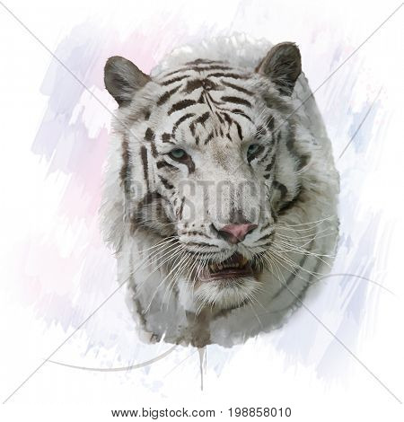 Digital Painting of White Tiger