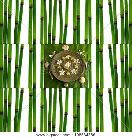 Collage of with young bamboo sticks with candle ,soap, frangipani in bowl,shell, starfish on leaf