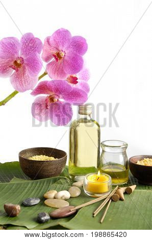 green leaf texture and health spa setting