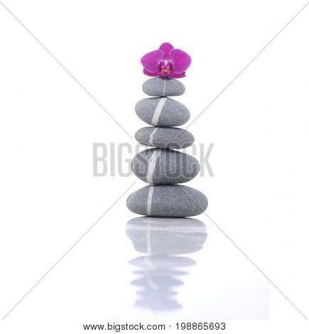 Pink orchid and stacked gray stones reflection