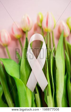 High angle view of Breast Cancer Awareness ribbon on tulip flowers against blue background