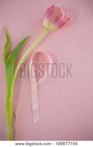 Overhead view of Breast Cancer Awareness ribbon on tulip against blue background