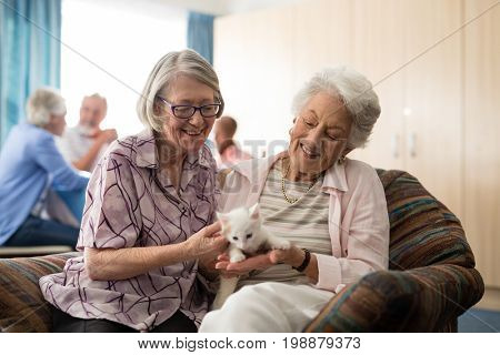 Smiling female senior friends looking at kitten while sitting on arm chair in nursing home