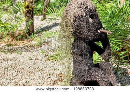 Funny statue of a man smoking made from coconut or other tree fiber with hair of Spanish moss. Object found in a forest with tropical plants in the background.
