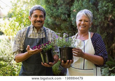 Portrait of happy senior couple holding pot plant in garden