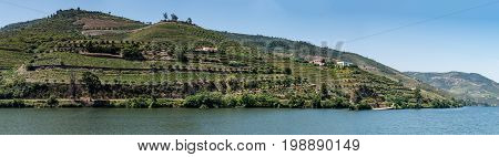 Point of view shot from historic train in Douro region Portugal. Features a wide view of terraced vineyards in Douro Valley Alto Douro Wine Region in northern Portugal officially designated by UNESCO as World Heritage Site.