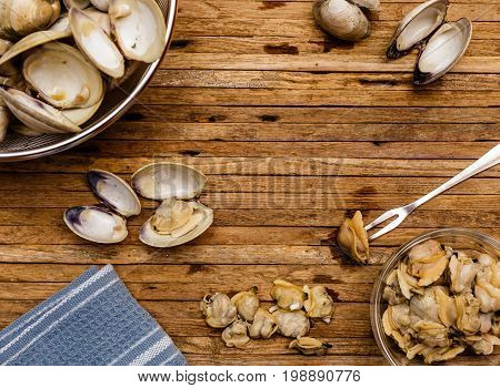 Overhead photo of steamed little neck clams being shelled on cutting board. Blue towel empty clam shells and clam meat can be seen in photo.