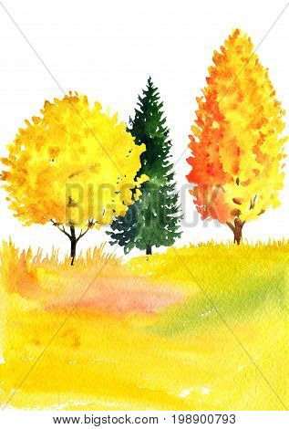 watercolor autumn landscape with deciduous trees, fir and grass, abstract nature background, forest template, yellow and red foliage and plants, hand drawn illustration