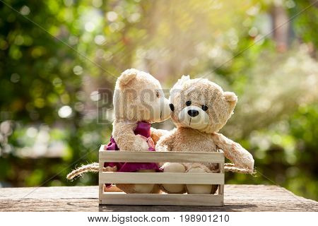 Close up bear kiss lovely brown two teddy bear in wooden box on wood concept love and understanding. With lens flare Natural background