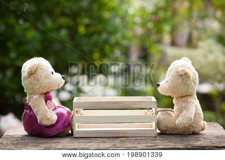 Two teddy bears in love sitting opposite a wooden box in the middle. Concept of love understanding and tenderness. With lens flare Natural background
