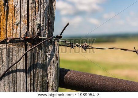Barbed wire on a wooden fence in the field