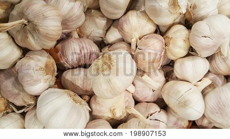 group of varity sizes of Fresh organic asian garlic at fresh gourmet cuisine market