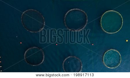 Top view at the round ponds encircled with net of fish farm in Adriatic sea, Montenegro