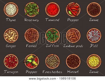 Vector illustration of a variety of spices and herbs in wooden bowls on a black background, top view. Template, design element
