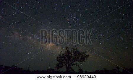 Natural background of the starry sky and milky way at night of Doi Luang Chiang Dao at Chiang Mai province in Thailand. Long exposure shooting and high iso used make this photo have noise