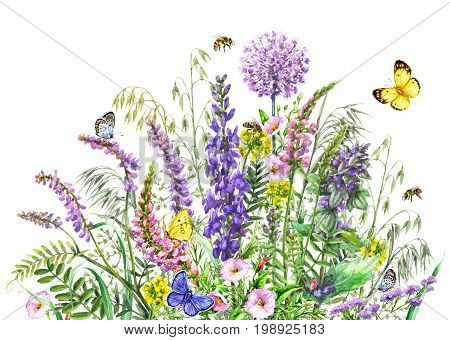 Hand drawn wild flowers and insects. Watercolor vivd wildflowers bunch flying butterflies and bees isolated on white.
