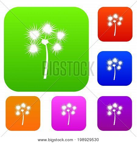Spiny tropical palm tree set icon in different colors isolated vector illustration. Premium collection