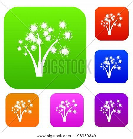 Three spiky palm trees set icon in different colors isolated vector illustration. Premium collection