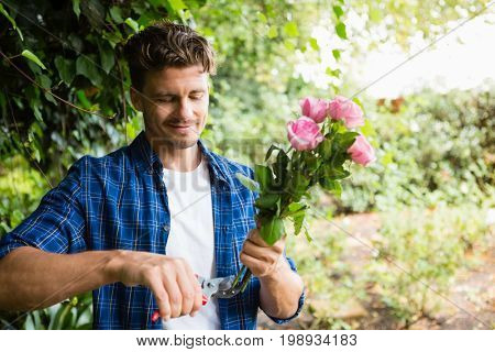 Man trimming flowers with pruning shears in garden on a sunny day