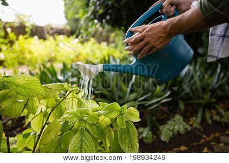 Mid-section of couple watering plants with watering can in garden on a sunny day