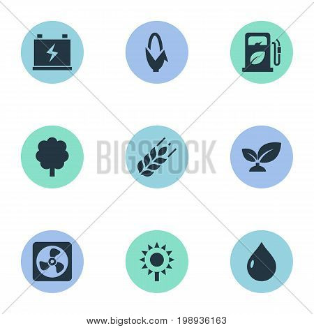 Elements Blossom, Forest, Droplet And Other Synonyms Nature, Barley And Grain.  Vector Illustration Set Of Simple Energy Icons.