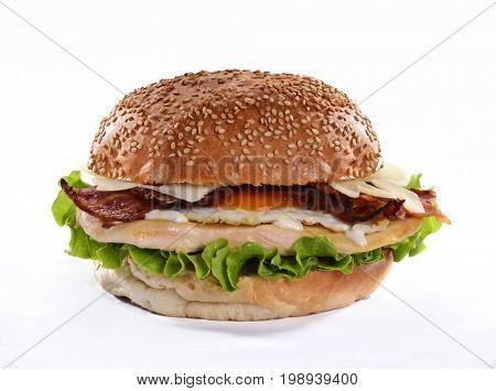 Chicken parmesan cheese burger isolated on white background.