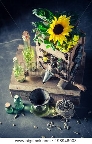 Extraordinary Virgin Oil Machine With Sunflower And Seeds