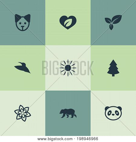 Elements Leaf, Bird, Flower And Other Synonyms Tree, Rose And Christmas.  Vector Illustration Set Of Simple Geo Icons.