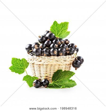 Fresh black currant berries in basket isolated on white background. Healthy eating. Single object with clipping path