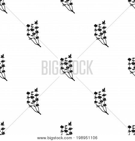 The Mongolian medicinal plant Artysh.Symbol of Mongolia.Mongolia single icon in black style vector symbol stock web illustration.