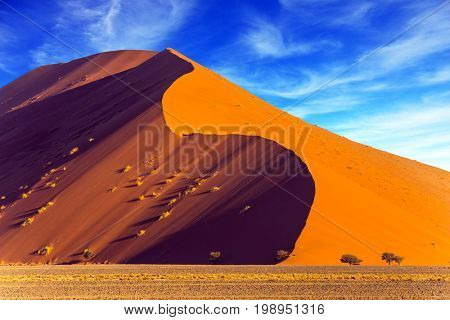 Namibia, South Africa. The concept of extreme and exotic tourism. Sharp border of light and shadow over the crest of the dune. The Namib-Naukluft at sunset
