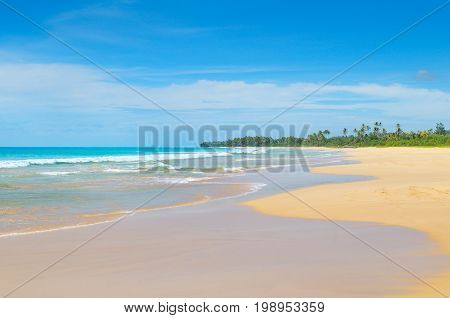Beautiful ocean long sandy beach and tropical vegetation