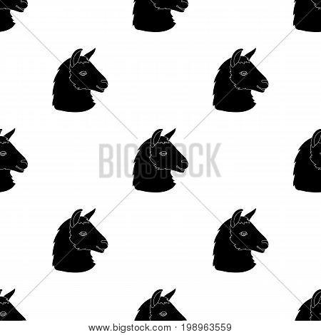 Lama icon in black design isolated on white background. Realistic animals symbol stock vector illustration.